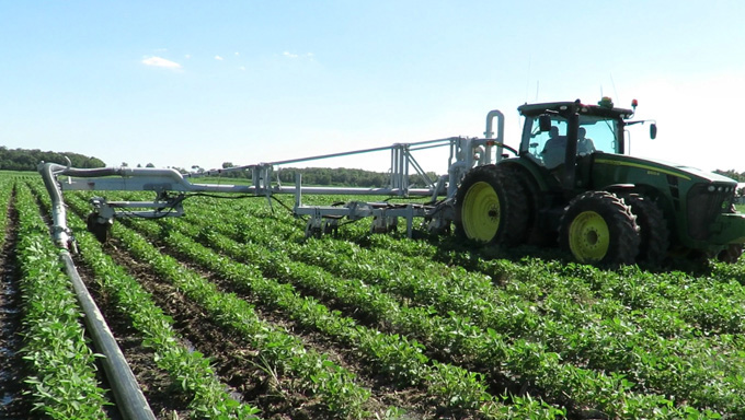 CMA Side Dressing in Soy Beans